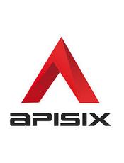 Apache APISIX v2.10 中文文档