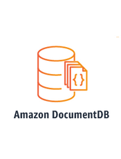 Amazon DocumentDB Developer Guide