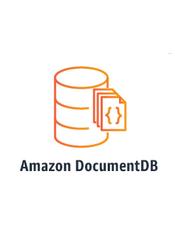 Amazon DocumentDB Developer Guide