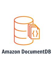 Amazon DocumentDB (兼容 MongoDB) 开发人员指南(20201111)