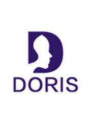Apache Doris 文档(201812)