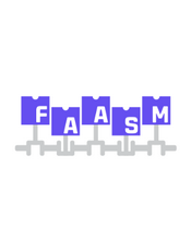 Faasm Document