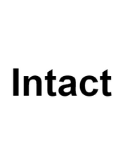 Intact - 前端MVVM框架