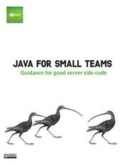 Java For Small Teams(英文)