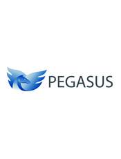Pegasus - Key-Value存储系统