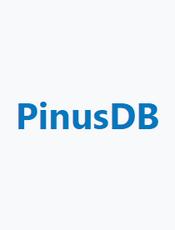 松果时序数据库PinusDB使用手册 v2.0