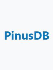 PinusDB v3.0 使用手册