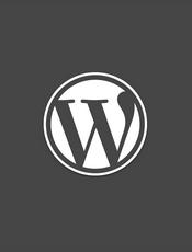 WordPress The Right Way(多语版)
