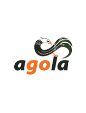 Agola v0.5 Document