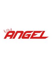Angel v2.x Document