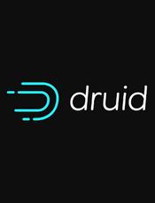 Apache Druid v0.22.0 Documentation