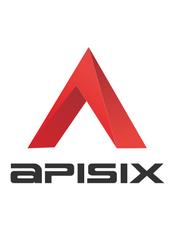 Apache APISIX v2.5 官方文档