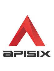 Apache APISIX v2.8 官方文档
