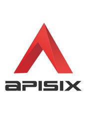 Apache APISIX v2.9 官方文档