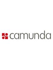 [英文] The Camunda BPM Manual