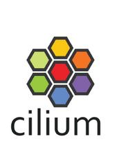 Cilium v1.10 Documentation
