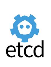 etcd v3.3.13 document