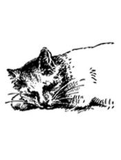 Flask-RESTful 0.3.6 Documentation