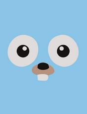 GoFrame v1.16 开发文档
