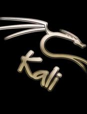 Kali Linux 秘籍 中文版
