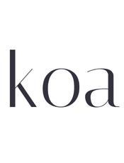 Koa v2.7.0 中文文档