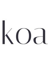 Koa中文文档