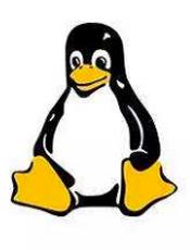 笨办法学 Linux 中文版