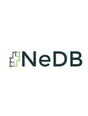 NeDB Document
