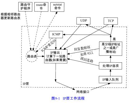 9. IP选路 - 图1