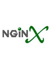 Nginx 中文官方文档