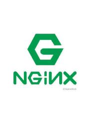 nginx从入门到精通
