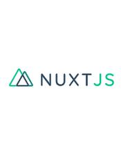 Nuxt.js v2.11.x API Document