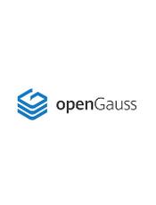 华为 openGauss (GaussDB) 1.0 使用手册