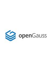 华为 openGauss (GaussDB) v1.1 使用手册