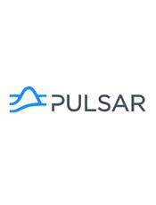 Apache Pulsar v2.4 Document