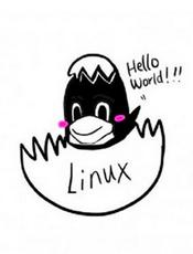 SploitFun Linux x86 Exploit 开发系列教程