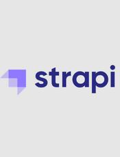 Strapi v3.5.4 Developer Documentation