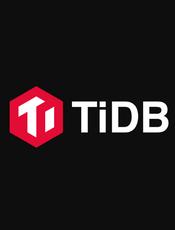 TiDB v5.2 用户手册