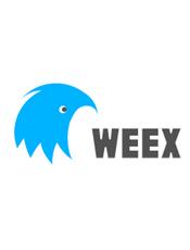 Weex 学习/实践指南